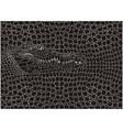 crocodile pattern background vector image