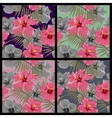 Set of tropical floral seamless patterns vector image