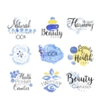 Beauty And Spa Promo Signs Colorful Set vector image