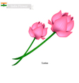 Lotus Blossom The National Flower of India vector image
