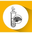 laboratory brain school knowledge vector image