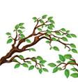 Leaves on tree vector image