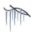 beautiful icicles hanging on a tree branch vector image