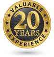 20 years valuable experience gold label vector image vector image