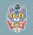 cartoon mysterious cat vector image