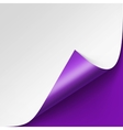 Curled corner of White paper on Purple Background vector image