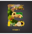 Vitamin E in Food vector image