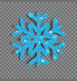 big shiny christmas snowflake vector image