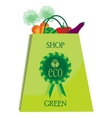 eco shopping bag with vegatables vector image vector image
