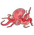 hand drawn octopus vector image