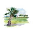 watercolor palm alley vector image
