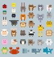 rectangle cartoon color flat animal vector image