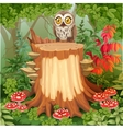 Fairy forest glade with cute owl sitting on stump vector image