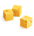 cheese snack vector image vector image