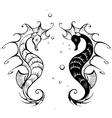 seahorses vector image