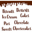 desserts names of chocolate writings poster vector image