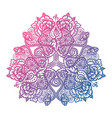 floral tribal mandala vector image