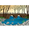bridge in nature vector image vector image