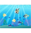 beautiful fish vector image vector image