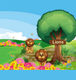Two lions in the garden with a wooden signboard vector image