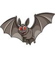 A bat vector image