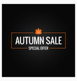autumn sale label design background vector image