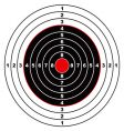 rifle target vector image vector image