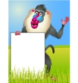 Baboon with blank sign vector image