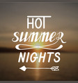 hot summer nights vector image