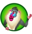 Baboon cartoon vector image
