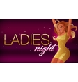 Ladies night banner Beautiful glamorous vector image