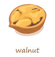 walnut icon isometric 3d style vector image
