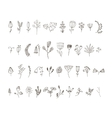 set of 40 hand drawn line flowers and vector image