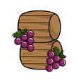wool barrels wine with grapes fruit vector image