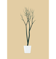 Dead tree in pot vector image