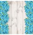 Forget-me-not background vector image