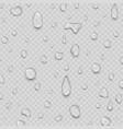 realistic water drops liquid transparent raindrop vector image