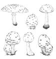 Nice hand drawn mushrooms vector image