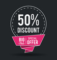 shopping big sales and discounts vector image
