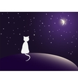 Lonely cat watching stars vector image