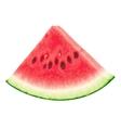 Piece of watermelon vector image