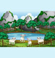 four sheeps by the pond vector image vector image
