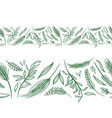 agriculture seamless borders vector image