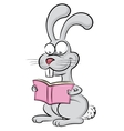 Rabbit reads a book vector image