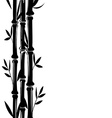 Bamboo background vector image vector image