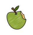 apple fruit isolated vector image