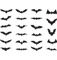 Bats collection vector image