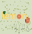 Water lemon vector image