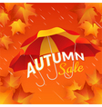 Autumn sale banner with umbrellas and maple leaves vector image