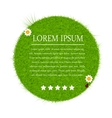 Green eco friendly label from green grass vector image vector image